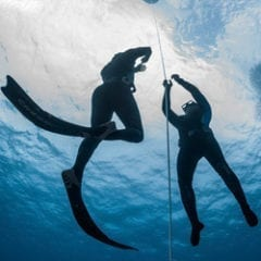 Spearfishing Gear