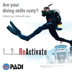 ReActivate Refresher Dive Course