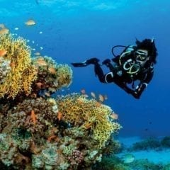 Waterproof W5 3.5mm Wetsuit for tropical diving